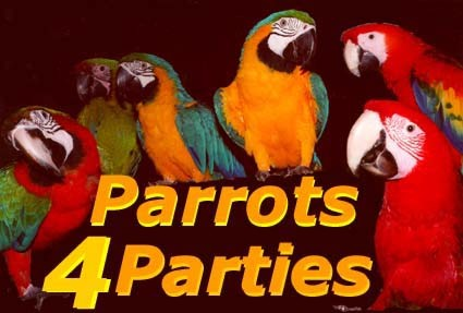 Parrots 4 parties the world's largest troupe of entertaining parrots
